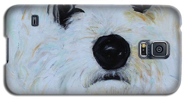 Bichon Frise-king Charles Cavalier Spaniel Mix - Molly Galaxy S5 Case by Laura  Grisham