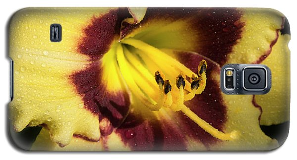 Galaxy S5 Case featuring the photograph Bicolored Lily by Jean Noren