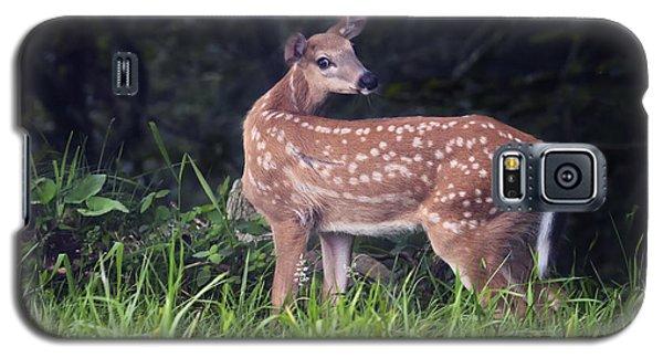 Big Bambi Galaxy S5 Case