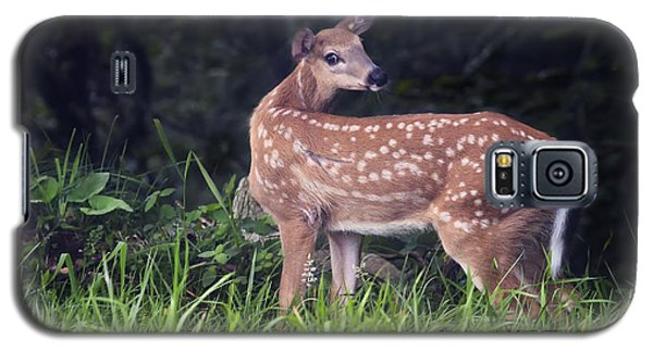 Big Bambi Galaxy S5 Case