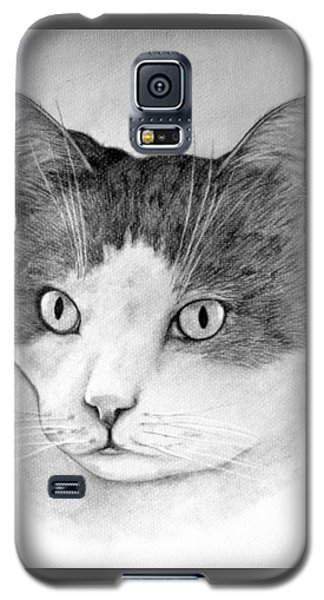 Galaxy S5 Case featuring the drawing Big Boy Baily by John Stuart Webbstock