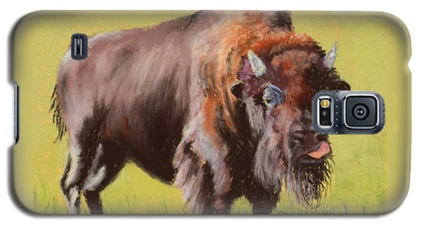 Galaxy S5 Case featuring the painting Big Boy by Nancy Jolley