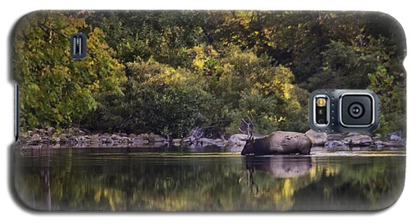 Big Bull In Buffalo National River Fall Color Galaxy S5 Case