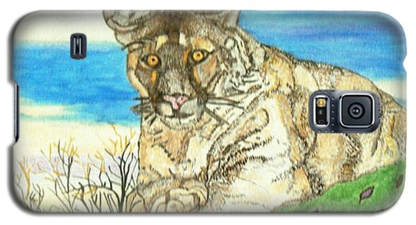Big Cat Watching Out For Prey Galaxy S5 Case by Connie Valasco