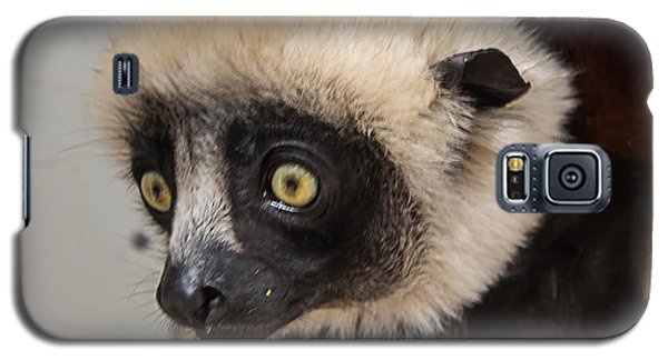 A Very Curious Sifaka Galaxy S5 Case