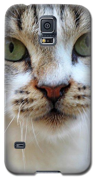 Galaxy S5 Case featuring the photograph Big Green Eyes by Munir Alawi