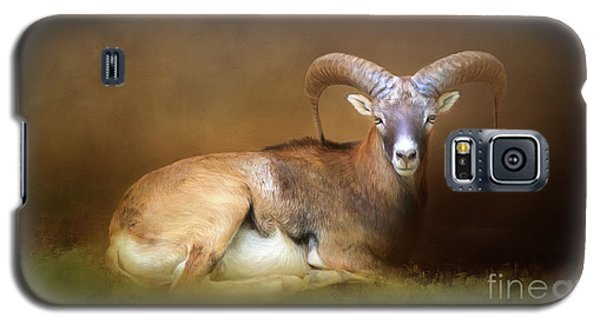 Big Horn Sheep Galaxy S5 Case by Marion Johnson
