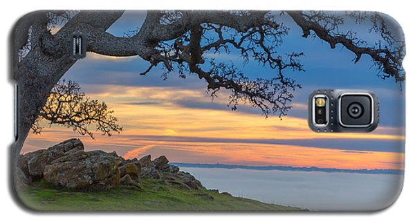 Big Oak Above Fog Galaxy S5 Case