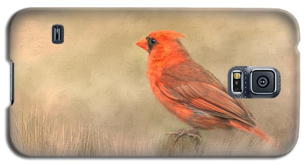Galaxy S5 Case featuring the mixed media Big Red by Steven Richardson