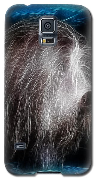 Galaxy S5 Case featuring the photograph Big Shaggy Dog by EricaMaxine  Price