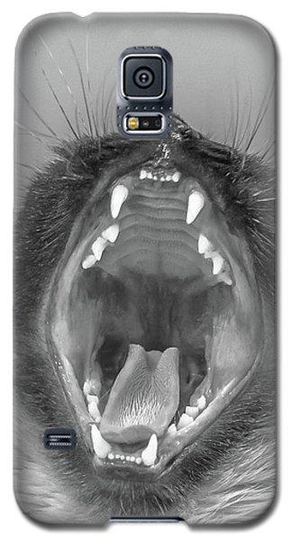 Big Yawn Galaxy S5 Case