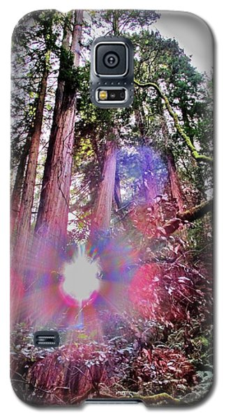 Galaxy S5 Case featuring the photograph Bigfoot Into The Light by John King
