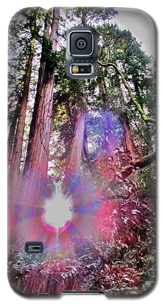 Bigfoot Into The Light Galaxy S5 Case by John King