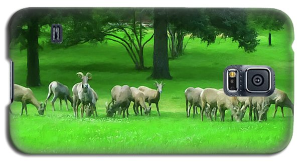 Galaxy S5 Case featuring the digital art Bighorn Sheep Ewes  by Chris Flees