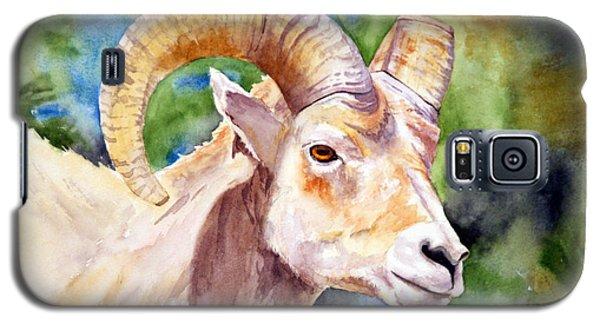 Bighorn Sheep Portrait Galaxy S5 Case