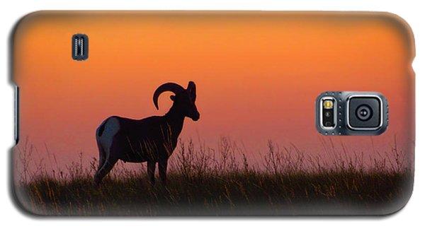 Bighorn Sunset Galaxy S5 Case