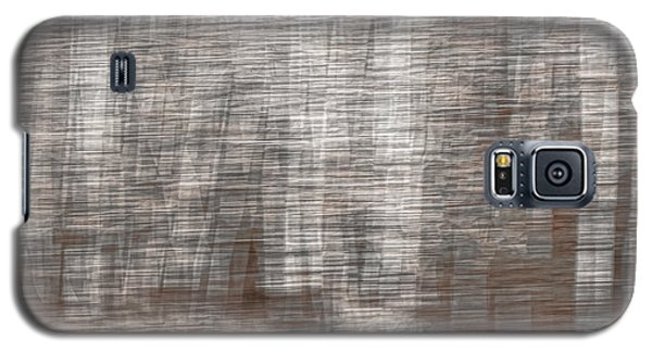 Birch At The Forest Edge Galaxy S5 Case by Thomas Young