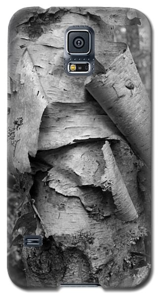 Birch Bark Galaxy S5 Case