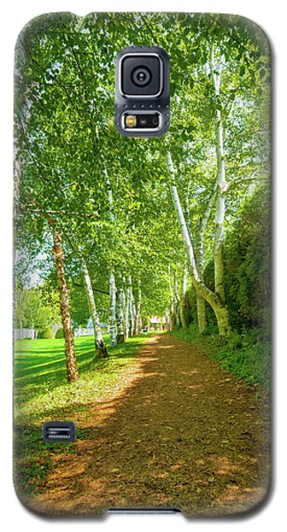 Galaxy S5 Case featuring the photograph Birch Gauntlet by Greg Fortier