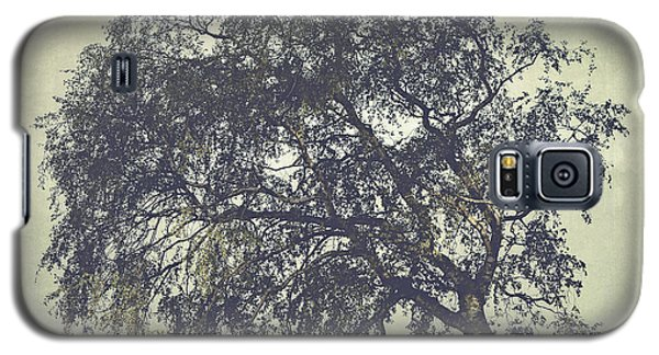 Galaxy S5 Case featuring the photograph Birch In The Mist by Ari Salmela