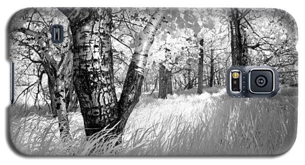 Birch In The Tall Grass Galaxy S5 Case