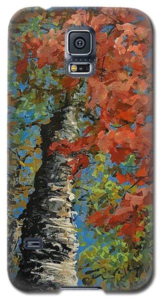 Birch Tree - Minister's Island Galaxy S5 Case