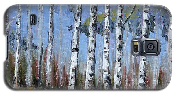 Birch Tree Path Galaxy S5 Case