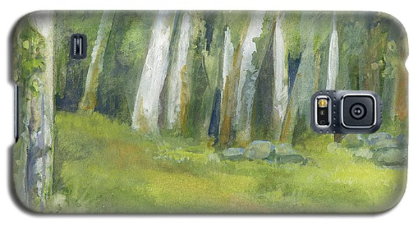 Birch Trees And Spring Field Galaxy S5 Case