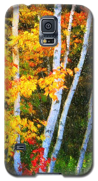 Birch Trees Galaxy S5 Case by Verena Matthew