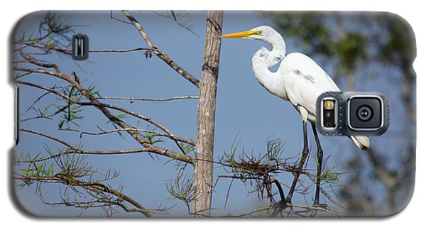 Bird 154 Galaxy S5 Case