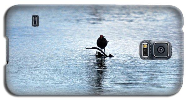 Galaxy S5 Case featuring the photograph Bird 7986 by Teresa Blanton