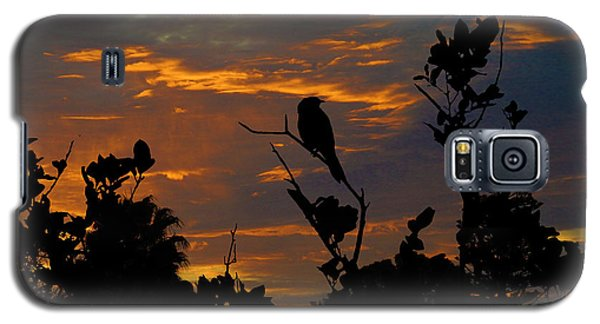 Bird At Sunset Galaxy S5 Case by Mark Blauhoefer