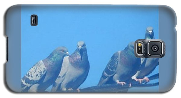 Bird Gossip Galaxy S5 Case