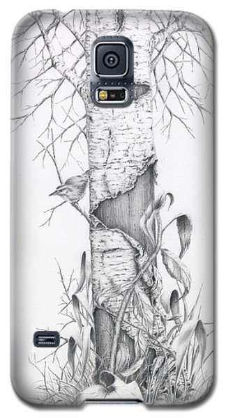 Bird In Birch Tree Galaxy S5 Case