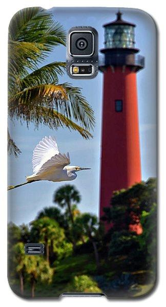 Bird In Flight Under Jupiter Lighthouse, Florida Galaxy S5 Case by Justin Kelefas