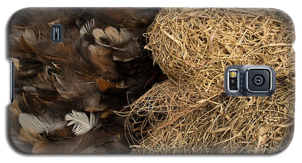 Bird Nest And Feathers Galaxy S5 Case