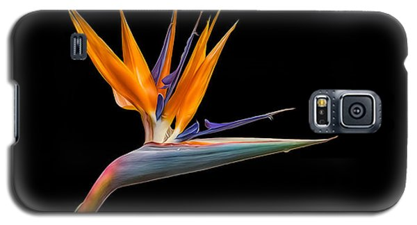 Bird Of Paradise Flower On Black Galaxy S5 Case