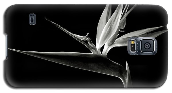 Bird Of Paradise In Black And White Galaxy S5 Case