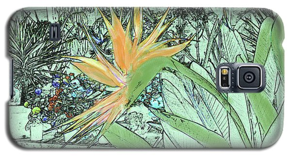 Galaxy S5 Case featuring the photograph Bird Of Paradise In The Hothouse by Nareeta Martin