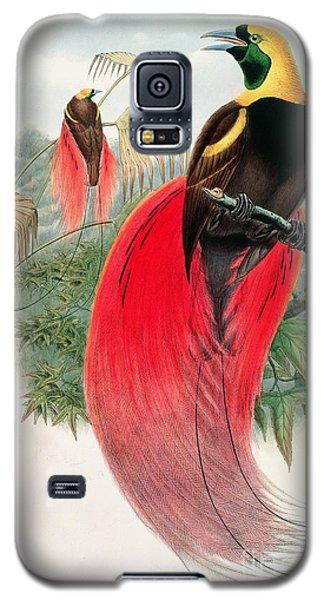 Audubon Galaxy S5 Case - Bird Of Paradise by John Gould