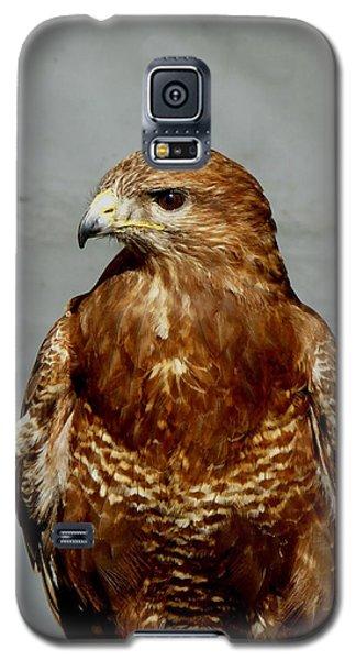 Bird Of Prey  Galaxy S5 Case