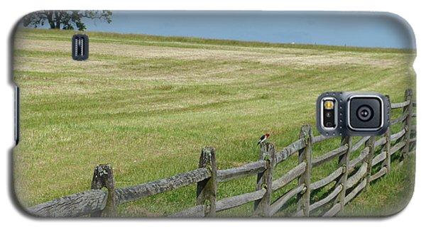Bird On A Fence Galaxy S5 Case by Donald C Morgan