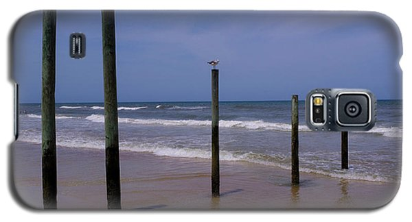 Bird On One Of Five Poles In Daytona Beach Florida Galaxy S5 Case