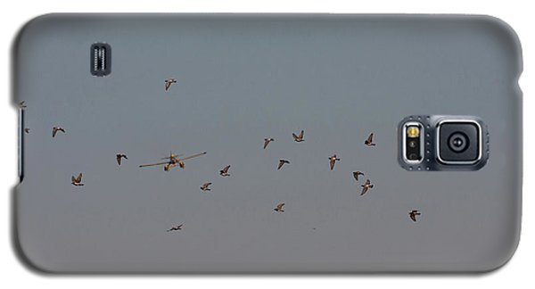 Birds And Airplane Galaxy S5 Case