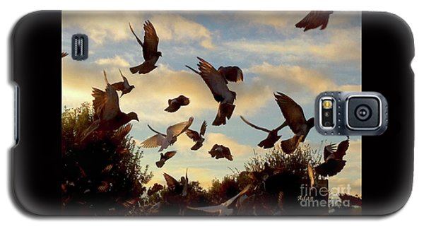 Birds And Fun At Butler Park Austin - Birds 1 Galaxy S5 Case by Felipe Adan Lerma