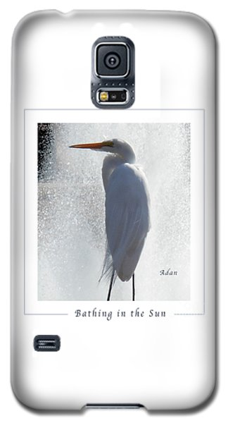 Birds And Fun At Butler Park Austin - Birds 2 Macro Poster Galaxy S5 Case