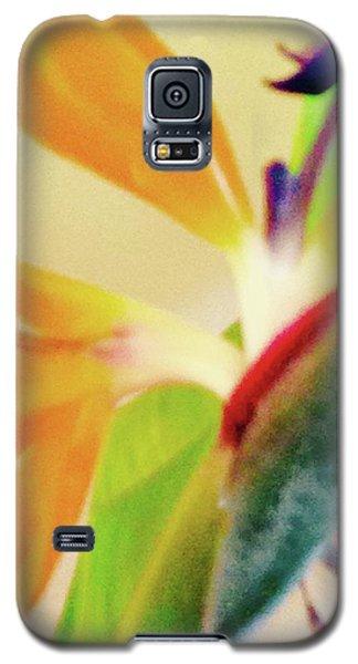Birds Bromeliads Halyconia 2 Galaxy S5 Case