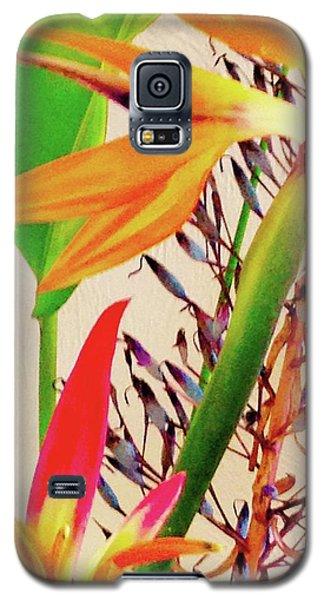 Birds Bromeliads Halyconia Galaxy S5 Case