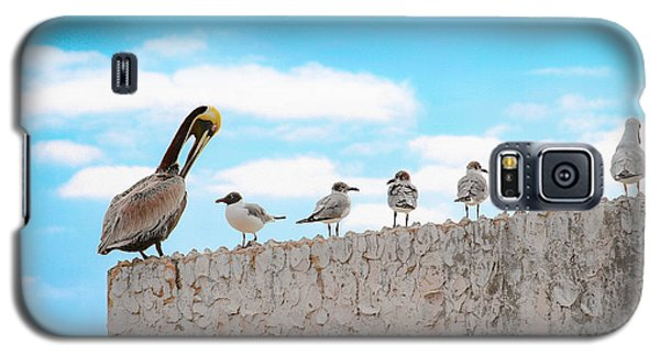 Birds Catching Up On News Galaxy S5 Case