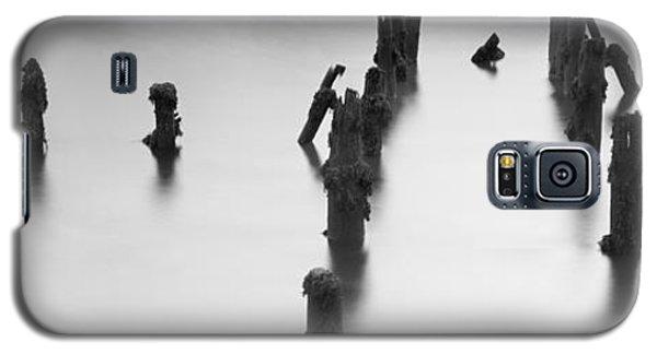 Birds Eye View.. Galaxy S5 Case
